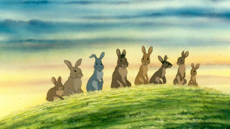 Special : WatershipDown